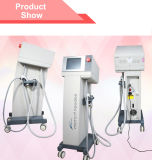 Pore RemovalのためのMr18-2s Changeable 3 Sizes Fractional RF Microneedle Machine