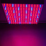 LED 14.4W Fill Light Plant Grow Light