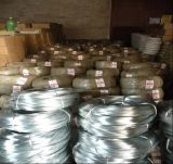 draad 18gauge 25kg Gegalvaniseerde Zachte Bindende Wire/Gi voor Sri Lanka