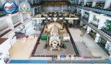 De gemeentelijke Vernieuwbare Energie (MSW) van het Project van de Elektrische centrale van het Huisvuil van de Stortplaats van het Stevige Afval