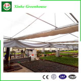 Facilmente Montados de vidro pequena estrutura de estufa Agrícola Solar de Inverno