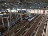 AACのブロック機械が付いている高性能AACのブロックの生産ライン