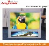 """23.6""""+19"""" """" HD Digital Signage Player Publicité multimédia de réseau WiFi Ascenseur TFT LCD Affichage de l'écran"""