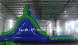 아이 Tyos (RC-018)를 위한 수영풀을%s 가진 팽창식 물 미끄럼