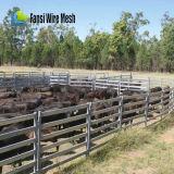 panneau ovale de bétail de longeron de 115X42mm