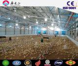 Pollo Poulty del criador de la parrilla de la vertiente de la capa vertido (PCH-22)