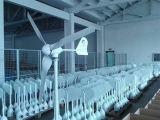 Générateur de puissance du vent avec 3 ou 5 lames pour la maison