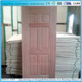 Зола и естественная древесина Sapeli лощили отлитую в форму кожу двери переклейки