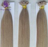 18#は100%年のRemy Uの先端の毛の拡張を卸し売りする