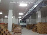 La cella frigorifera personalizzata e refrigera la strumentazione per il grande centro di distribuzione di viveri
