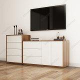 Cg03A Wohnzimmer-moderner Entwurfs-Fach-Schrank