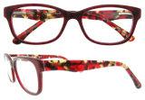 형식 Eyewear 새로운 프레임 중국 도매 Eyewear