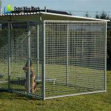 Perreras negras durables resistentes del perro del final para la venta