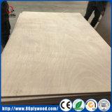 Contre-plaqué commercial en bois de bois de construction de bouleau de chêne de BB/CC Okoume pour l'emballage