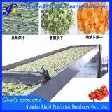 Strumentazione di secchezza per le frutta e le verdure disidratate