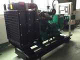 38квт 30квт Cummins технологии природного газа для производства биогаза генератора Генератор