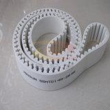 Glasrand-Maschinen-Zahnriemen