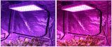 Luz Growing da melhor planta cheia barata do diodo emissor de luz do espetro 600W