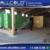 Пластинчатые овощных ферм вакуумный охладитель