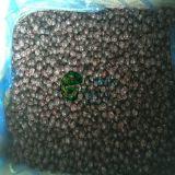고품질 언 IQF 사나운 까막까치밥 나무