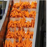 Транспортеры пояса качества еды низкой цены поднимаясь с гарантированностью