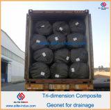 Drainage를 위한 HDPE Plastic Geonet Geocomposite
