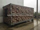 Construção Professinonal Construstion Sala / Casa pré-fabricada / pré-fabricada móvel dobrável