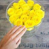 Caixa acrílica por atacado de Rosa da caixa de presente da flor para o anel