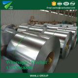 Stahl Coil/PPGI/Gl/PPGL/Gi von der Heibei Provinz