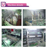 Automatisches Doppeltes-Line Rolling Vegetalbe Bag Making Machine mit Perforation