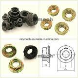 Noix galvanisée de rivet d'acier du carbone/noix Hex/noix de cage/noix de Keps/noix Hex de bride