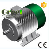 14kw 3 단계 AC 저속 Rpm 동시 영구 자석 발전기, 바람 또는 물 또는 수력 전기 힘