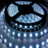 Striscia calda dell'automobile LED dell'indicatore luminoso della corda di bianco SMD 5730 12V 60LEDs/M