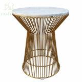 Châssis métallique de design italien Designer fil rond Table à café