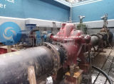 Doppelte Absaugung-aufgeteilte Fall-Wasser-Pumpe