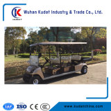 6 plazas turísticas coche con motor 48V 4kw