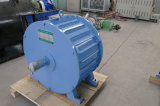 영구 자석 발전기 100kw 250rpm 48-690V 발전기