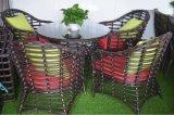 Tableau Furniture-108 extérieur de rotin de loisirs