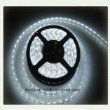 Super heller Dimmable 120LEDs/M SMD 2835 LED Streifen