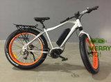 고품질 세륨 승인되는 중심 모터 전기 뚱뚱한 타이어 자전거
