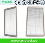 ガラスLED表示Gws LED表示/3Dビデオ壁の価格の屋外のフルカラー/LEDガラスポスター印