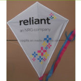 Hot Sale Fashion Chinese Serigrafia Logotipo Triangle Kite