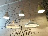 Iluminação moderna de alumínio do metal da luz do pendente da lâmpada de madeira do pendente