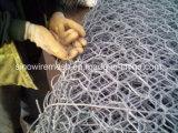 Het hexagonale Opleveren van de Draad/het Opleveren Pourltry voor Verkoop