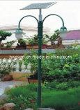 Het dubbele Licht van de Tuin van de Paddestoel van Pool van Wapens 2*6W 4m Zonne