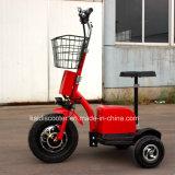 Voertuig van het Sightseeing van de Autoped van de Mobiliteit van 3 Wielen van Ce het Gediplomeerde Elektro500W