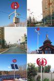 Turbina di vento verticale cinese di asse di rendimento elevato 300W con l'iso del Ce
