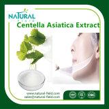 Poeder Asiaticoside van Uittreksel 10%-95% van Centella het het Asiatica/Uittreksel van de Installatie Asiaticosides