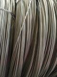 Cable de acero SAE1022 de Baosteel Saip para la fabricación de tornillos