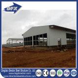 Poultry Farm Equipment Casa de pollo